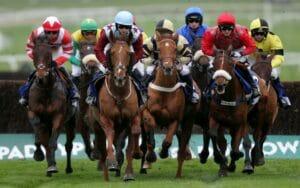 ladbrokes race