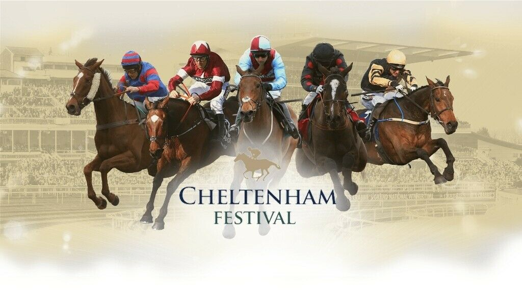 Cheltenham races betting guide